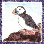 Seabird Tiles