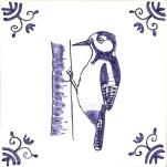 10 woodpecker