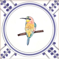 17 Bee Eater 1