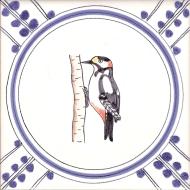5 Woodpecker