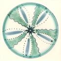 Diatom 17