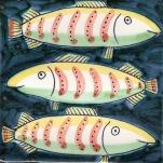 Fish 11