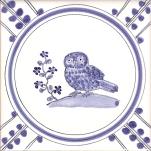 6 Owl 2 tile