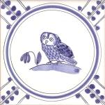12 Owl 3 tile