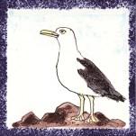 Seabird 13