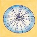 Sealife tile 40