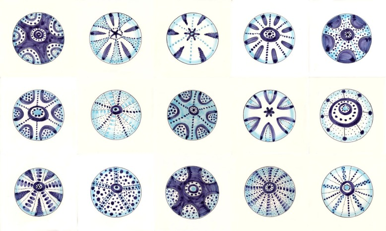 Tin glazed Urchin tiles