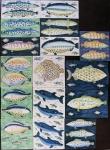 Large fish tiles