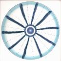 Diatom 12