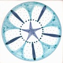 Diatom 14