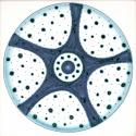 Diatom 24