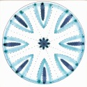 Diatom 3