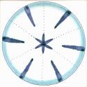Diatom 30