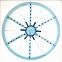 Diatom 34