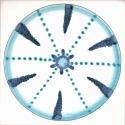 Diatom 4