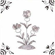 Wildflower 11 Viola