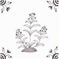 Wildflower 13 Self Heal