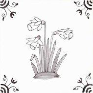 Wildflower 14 Daffodil