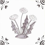 Wildflower 23 Dandelion