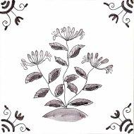 Wildflower 25 Honeysuckle