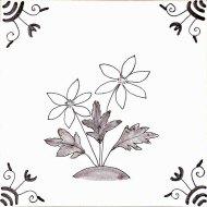 Wildflower 9 Wood Anemone
