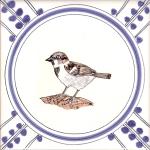 10 Sparrow