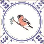 17 Bullfinch