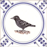23 Crow