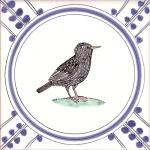 24 Starling