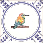 27 Bee-Eater 2