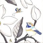 Bird and bug