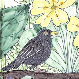 Hoppy the Blackbird