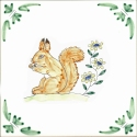 12 red squirrel