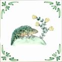 14 newt