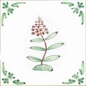 39 rosebay willowherb
