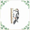 40 woodpecker
