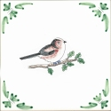 41 long tailed tit
