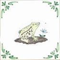 6 frog