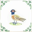 9 pheasant