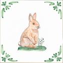 34 rabbit