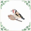 47 Goldfinch