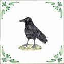 48 raven